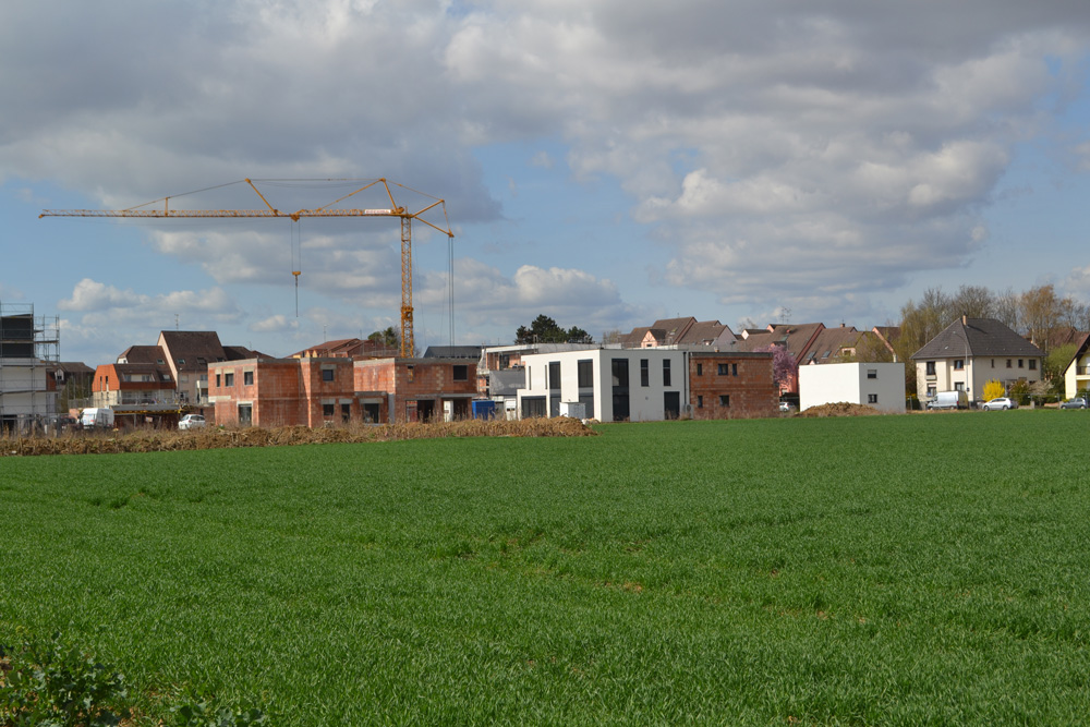 Travaux le jardin des sources à Mittelhausbergen