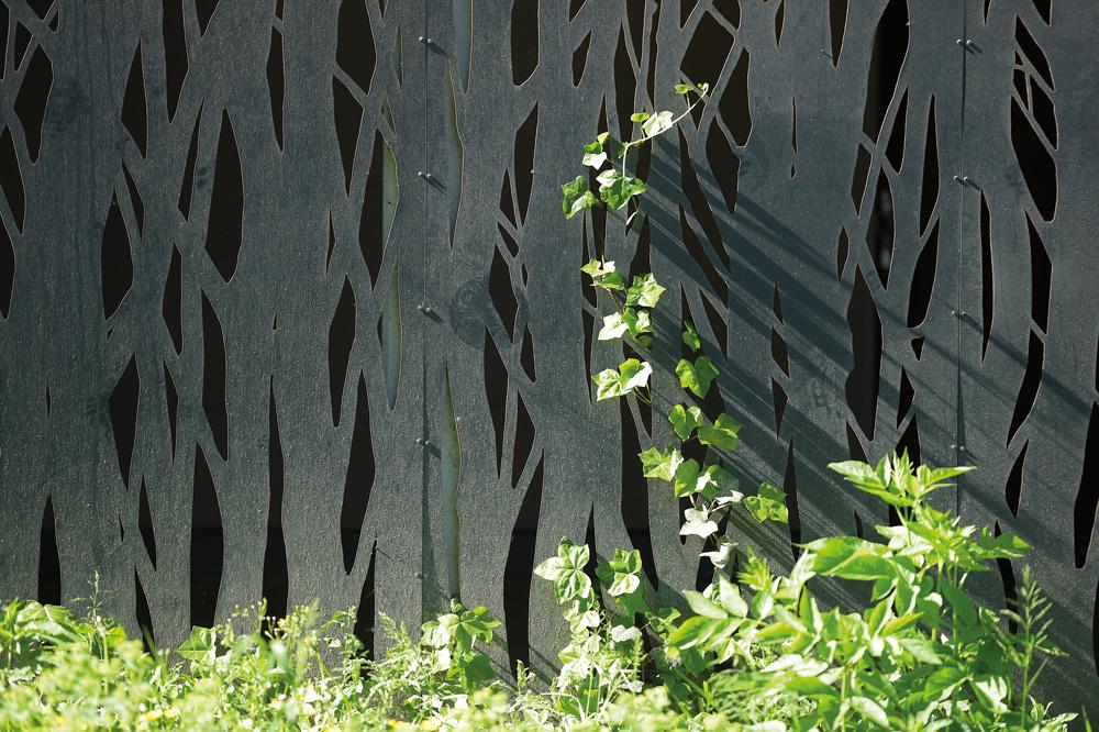 Mur avec plantes